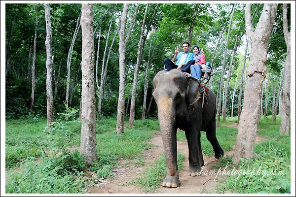 elephant-trekking-krabi03