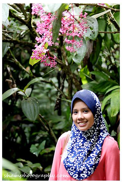 kinabalu-botanical-garden-shamphotography-sabah03