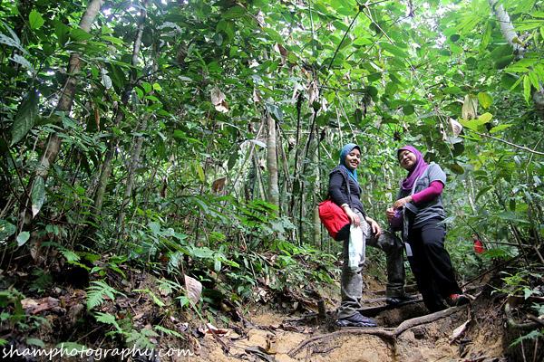 frim-kepong-hutan-simpan-bukit-lagong-alamsemulajadi-nature-hiking