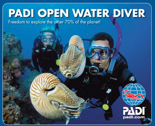 PADI-Openwater-Course-Logo-shamphotography