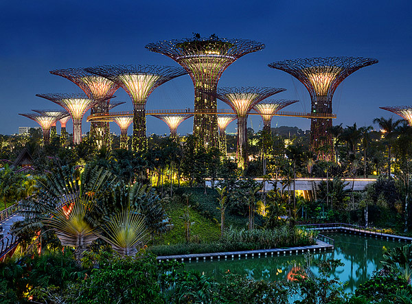 garden-by-the-bay-at-night-shamphotography-travel-logs-singapore