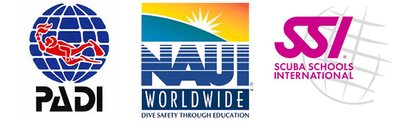 padi-logo-naui-logo-ssi-logo-shamphotography