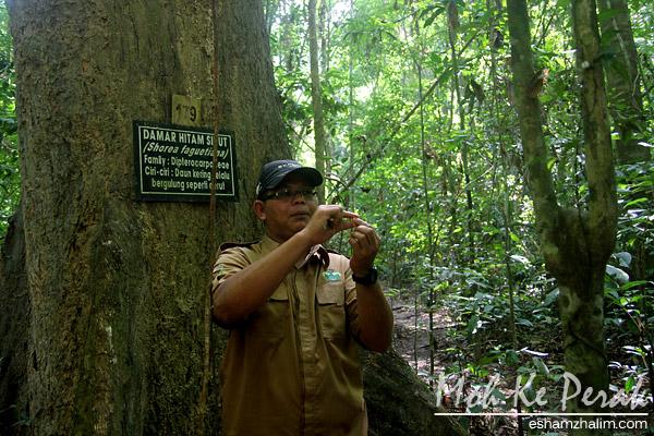 kem-sungai-papan-sira-papan-jenut-papan-jenut-garam-royal-belum-moh-ke-perak-tourism-malaysia-perak-visit-malaysia-2014
