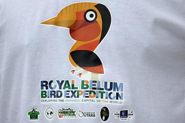 royal-belum-bird-expedition-tasik-temenggor-burung-enggang-hornbill-10-spesies-hornbill-royal-belum-eshamzhalim