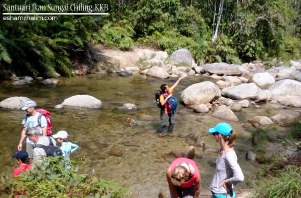 santuari-ikan-sungai-chiling-kuala-kubu-bharu-bukit-fraser-air-terjun-ikan-kelah-eshamzhalim