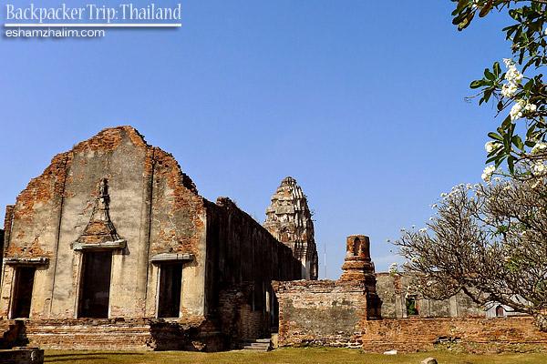 backpacker-trip-thailand-bangkok-hatyai-sunflower-farm-bunga-matahari-lopburi-the-monkey-city-visit-thailand-eshamzhalim-38
