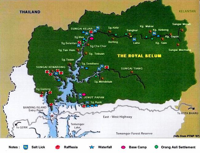 royal-belum-state-park-eshamzhalim-cattleya-outdoor-advanture